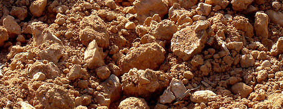 Our terroir: the Penedes